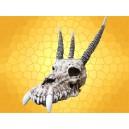 Crâne Dragon Squelette Dragons Gothique Macabre Crânes Décoratifs Fantasy