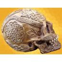 Crâne Celtique Runes Gravé ivoire Cranes Squelette Tribal Gothique  Macabre