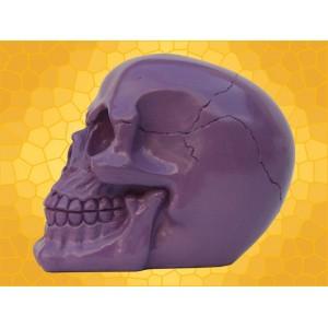 Crâne Violet Brillant Squelette Humain Décoration Gothique