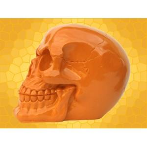 Crâne Orange Brillant Squelette Humain Décoration Gothique