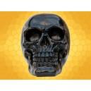 Crâne Noir Brillant Squelette Humain Décoration Gothique