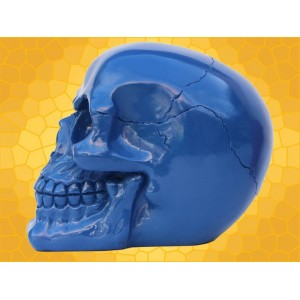 Crâne Bleu Brillant Squelette Humain Décoration Gothique