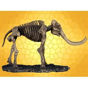 Squelette Mammouth Figurine Fossile Éléphant Préhistorique