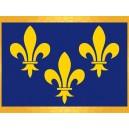 Drapeau Ile de France Fleurs de Lys Jaunes Fond Bleu Drapeaux Régionaux